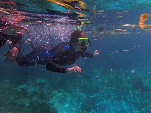 Although the 75 degrees Fahrenheit water of Three Sisters Springs was frigid at first, Nieto still jumped in and snorkeled with her family.